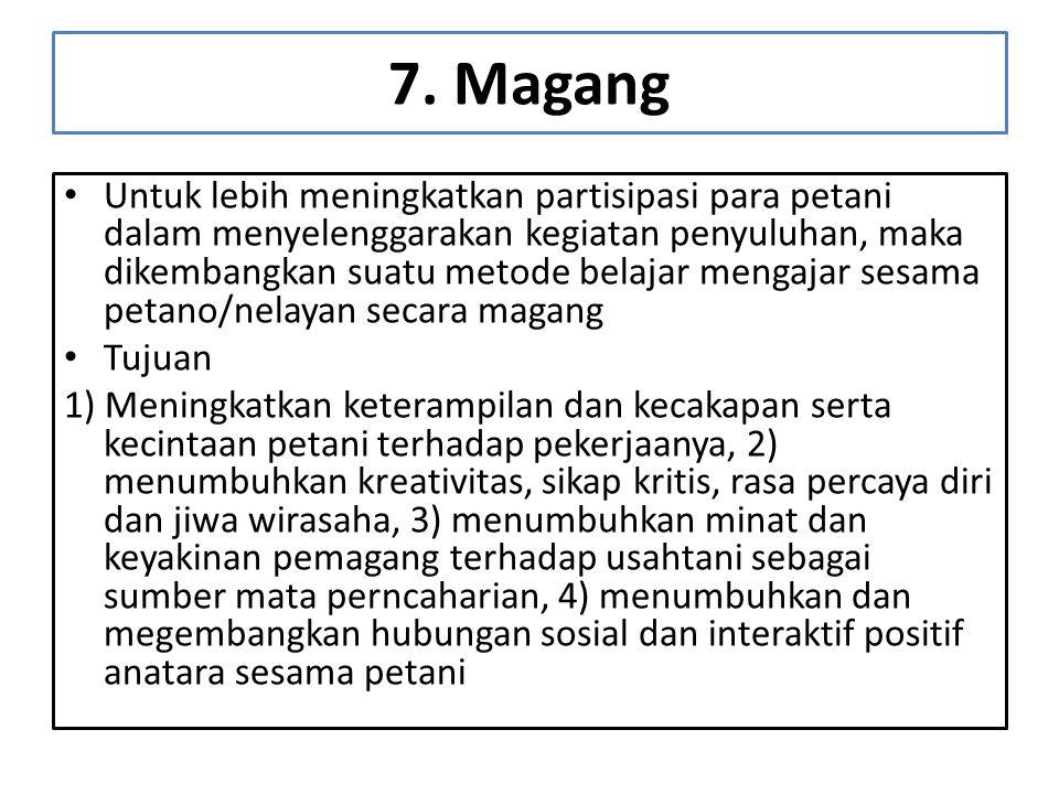 7. Magang
