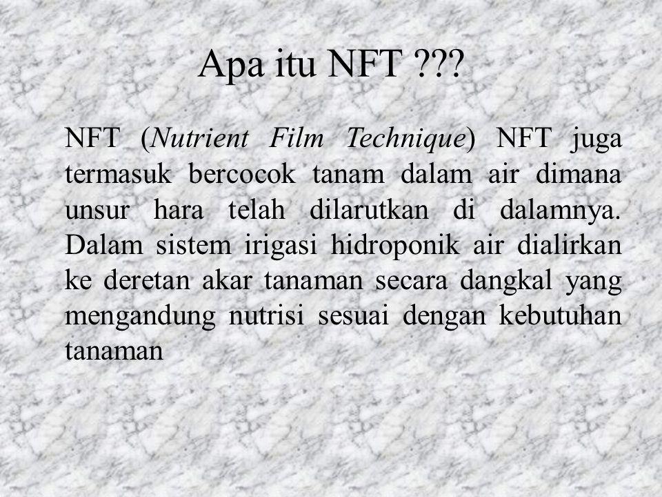 Apa itu NFT