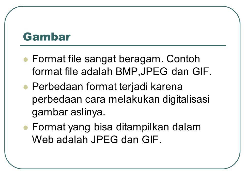 Gambar Format file sangat beragam. Contoh format file adalah BMP,JPEG dan GIF.