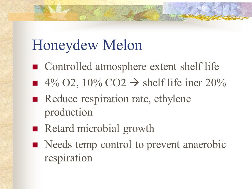 Honeydew Melon Controlled atmosphere extent shelf life