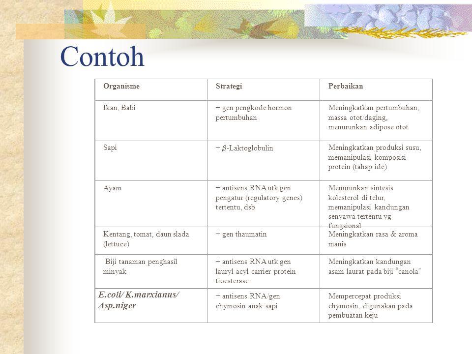 Contoh E.coli/ K.marxianus/ Asp.niger Organisme Strategi Perbaikan