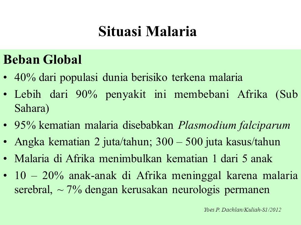 Situasi Malaria Beban Global