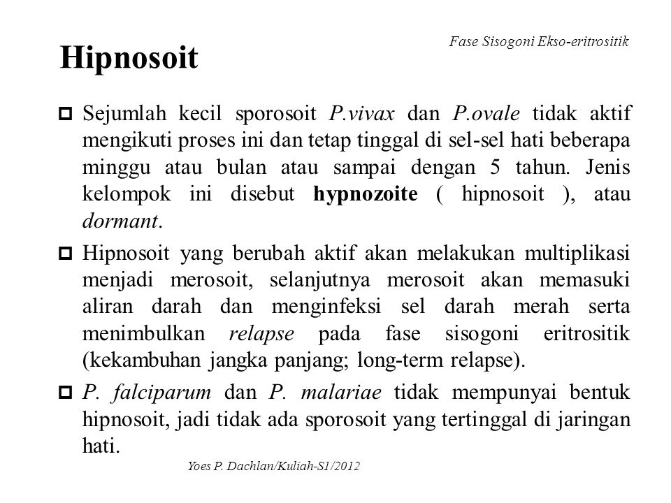 Hipnosoit Fase Sisogoni Ekso-eritrositik.