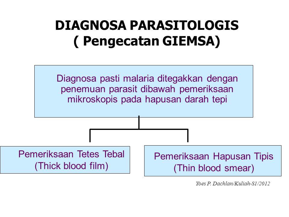 DIAGNOSA PARASITOLOGIS ( Pengecatan GIEMSA)