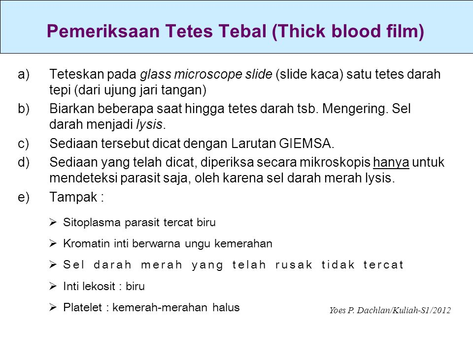 Pemeriksaan Tetes Tebal (Thick blood film)