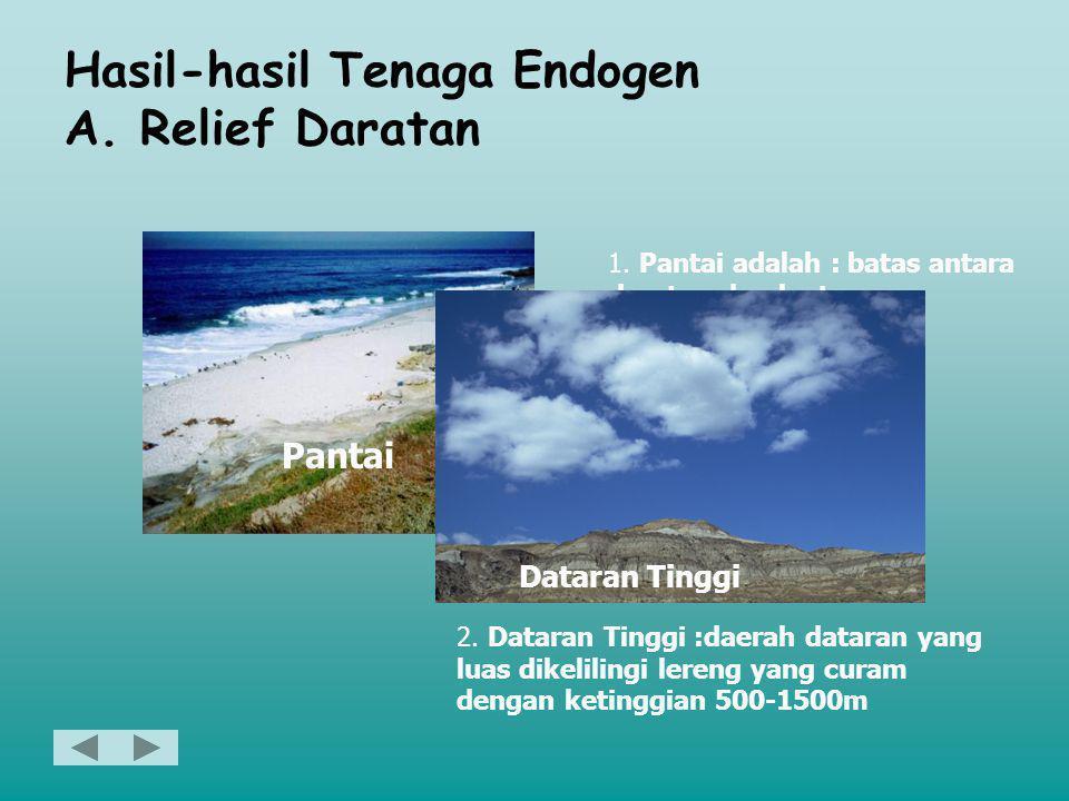 Hasil-hasil Tenaga Endogen A. Relief Daratan