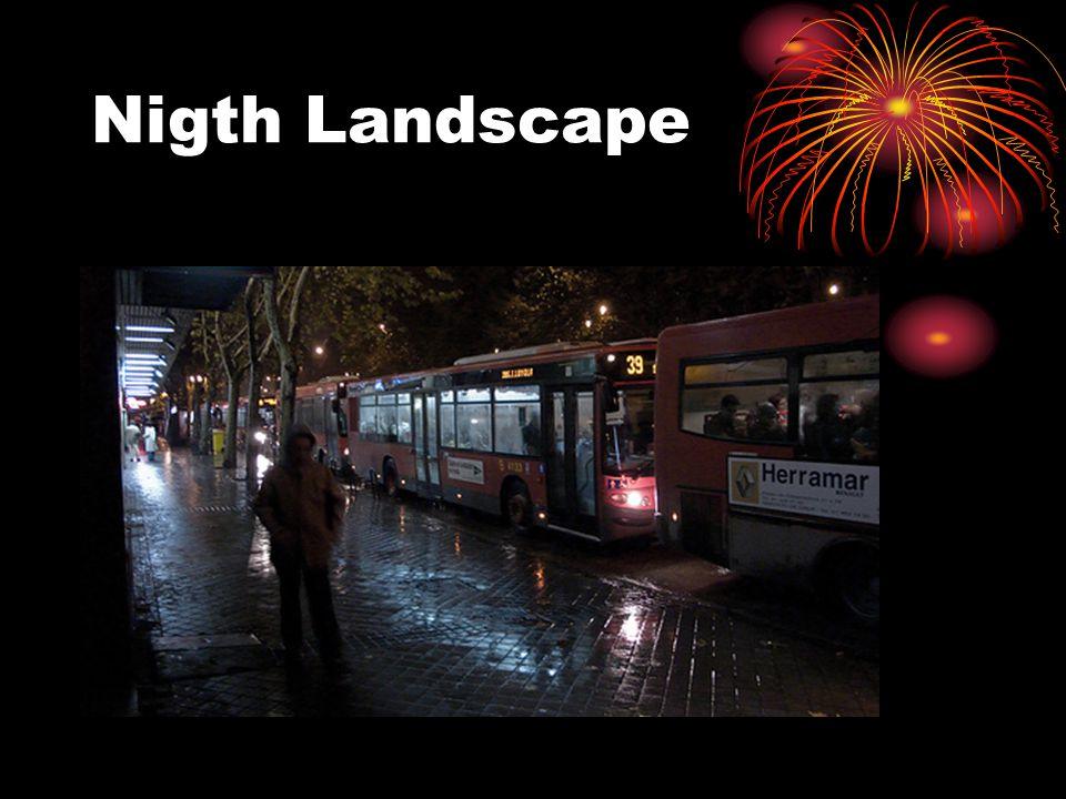 Nigth Landscape