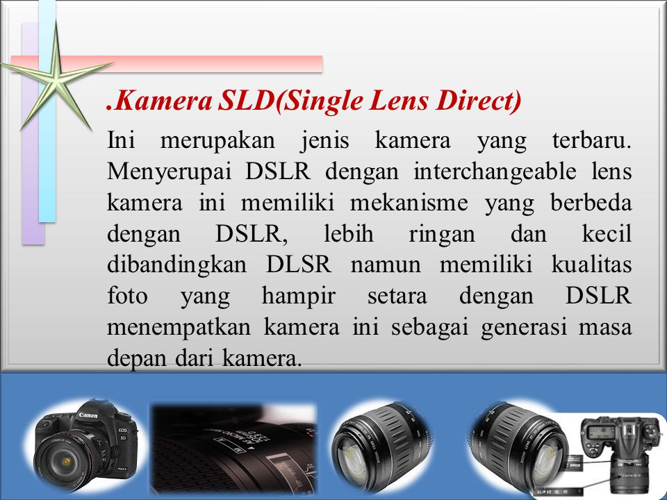 .Kamera SLD(Single Lens Direct)