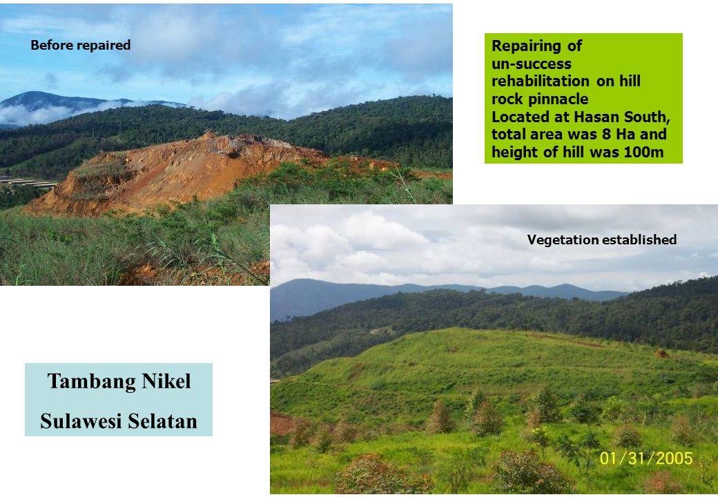 Tambang Nikel Sulawesi Selatan
