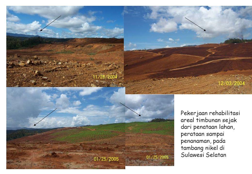Pekerjaan rehabilitasi areal timbunan sejak dari penataan lahan, perataan sampai penanaman, pada tambang nikel di Sulawesi Selatan