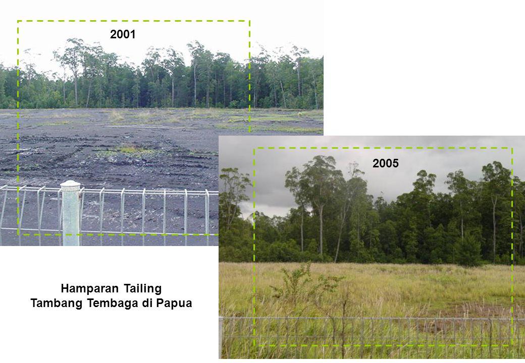 Hamparan Tailing Tambang Tembaga di Papua
