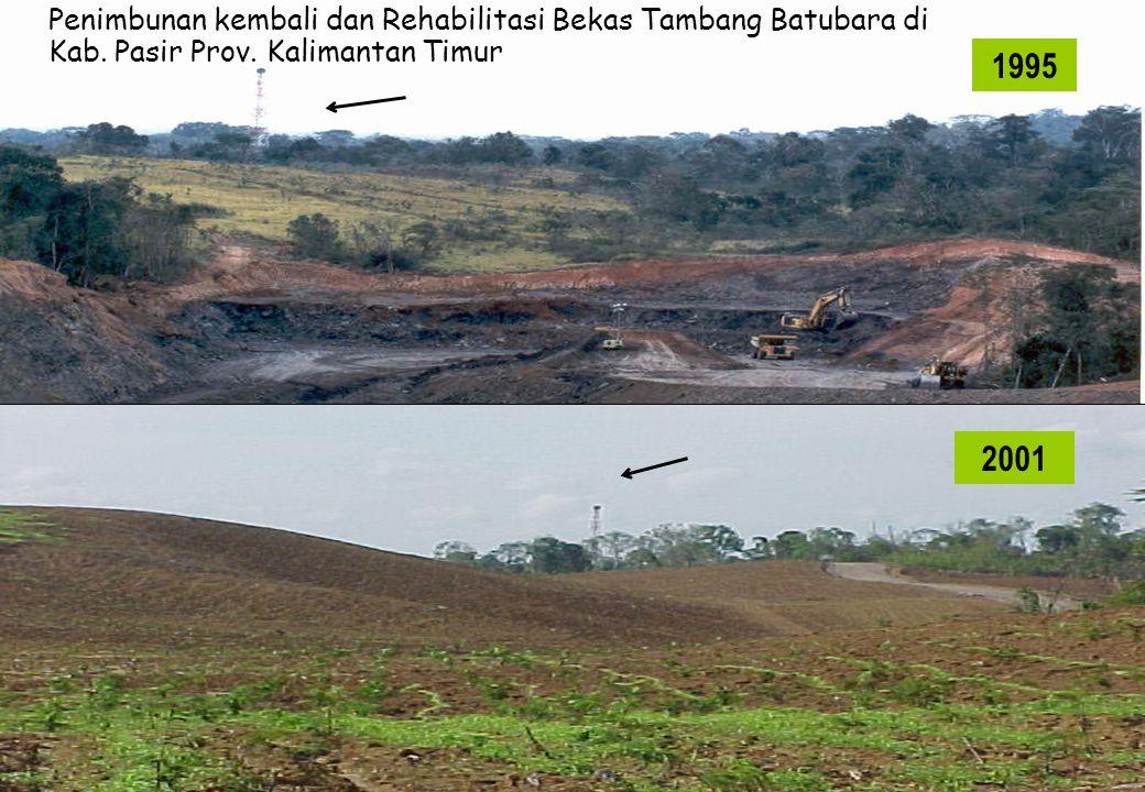 Penimbunan kembali dan Rehabilitasi Bekas Tambang Batubara di Kab