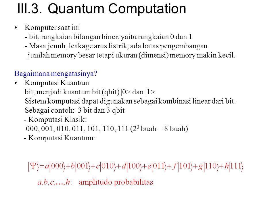 III.3. Quantum Computation