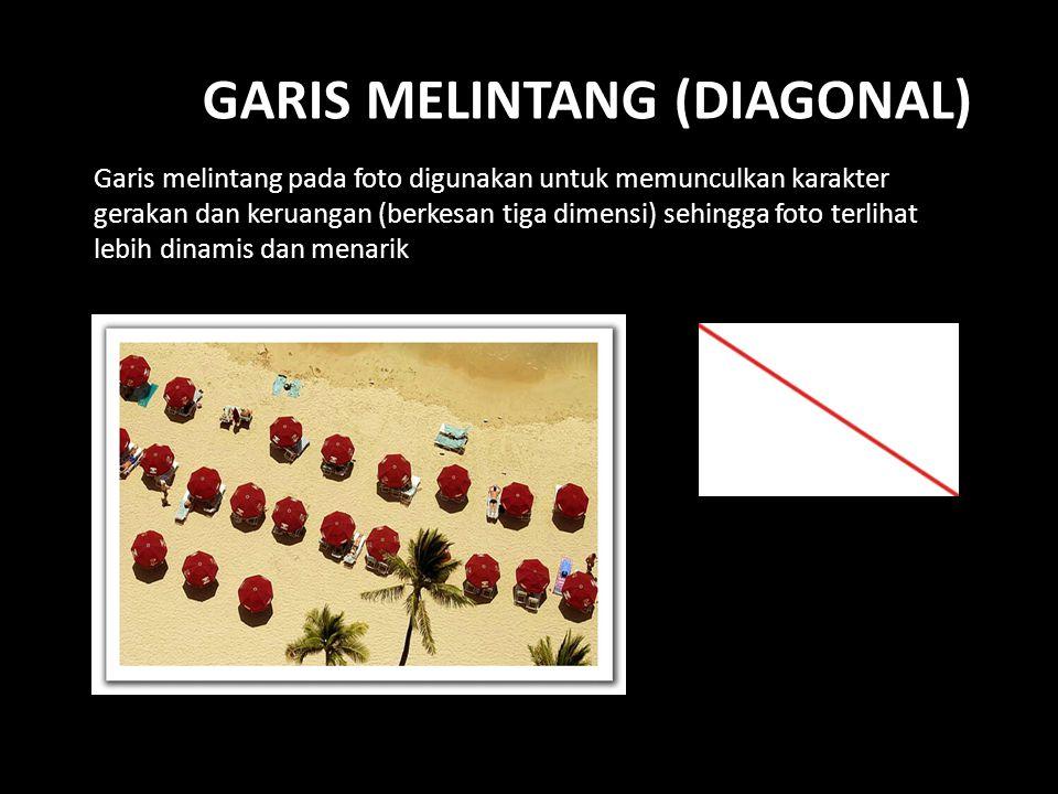 Garis melintang (diagonal)