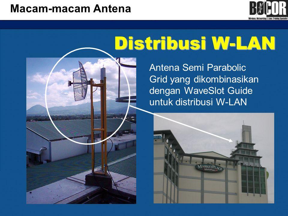Distribusi W-LAN Macam-macam Antena
