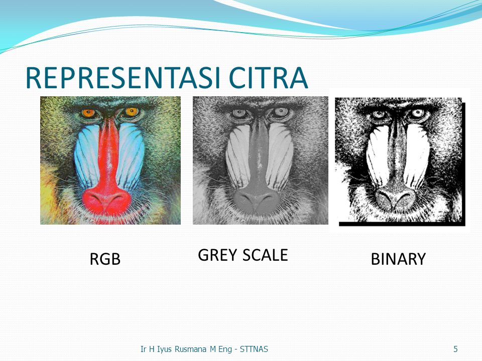 REPRESENTASI CITRA GREY SCALE RGB BINARY