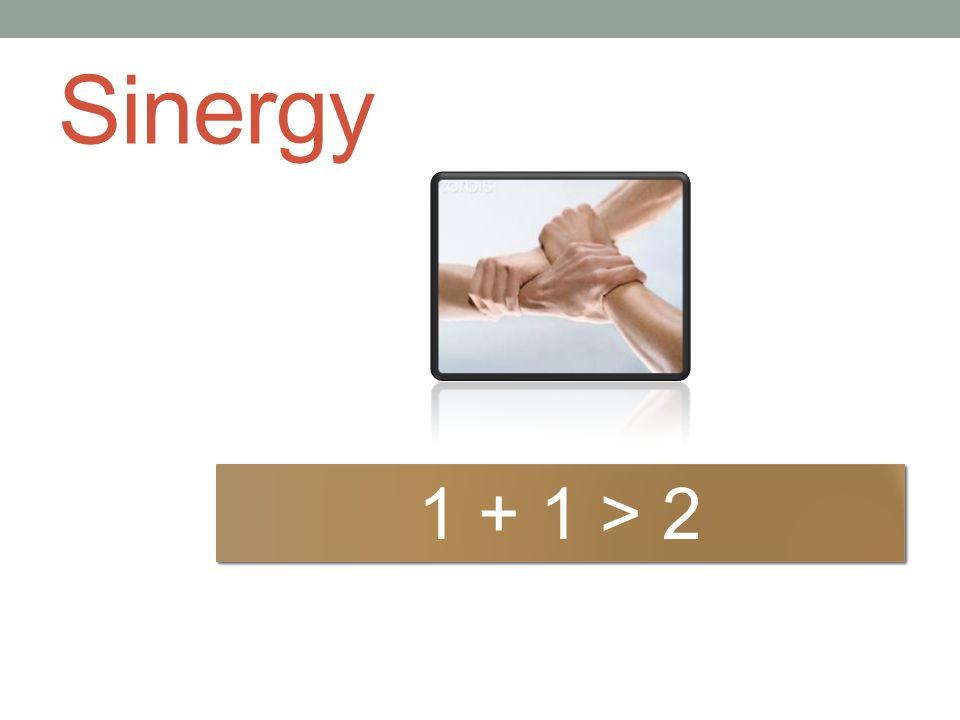 Sinergy 1 + 1 > 2