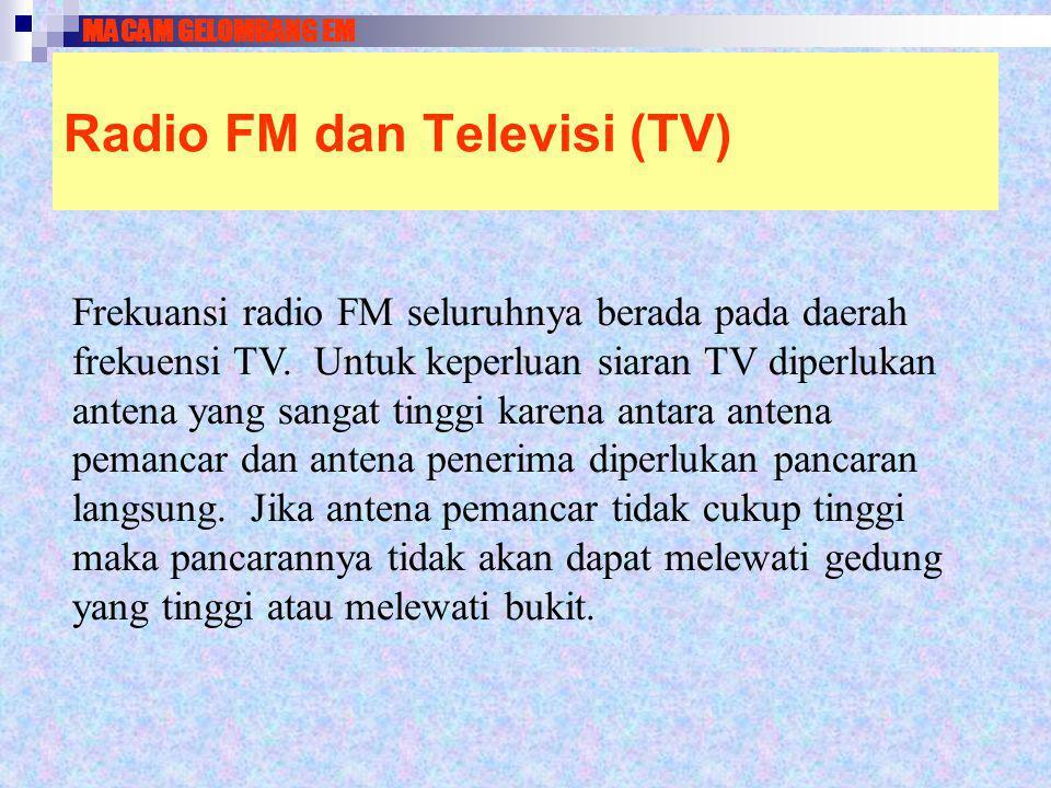 Radio FM dan Televisi (TV)