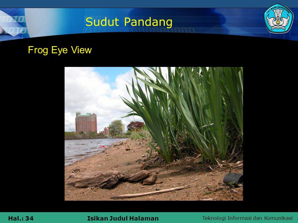 Sudut Pandang Frog Eye View