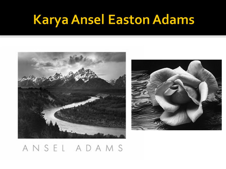 Karya Ansel Easton Adams