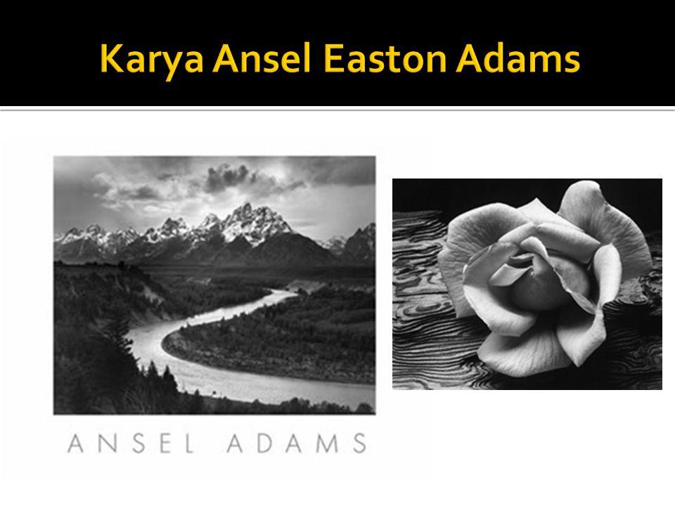 Karya Ansel Easton Adams