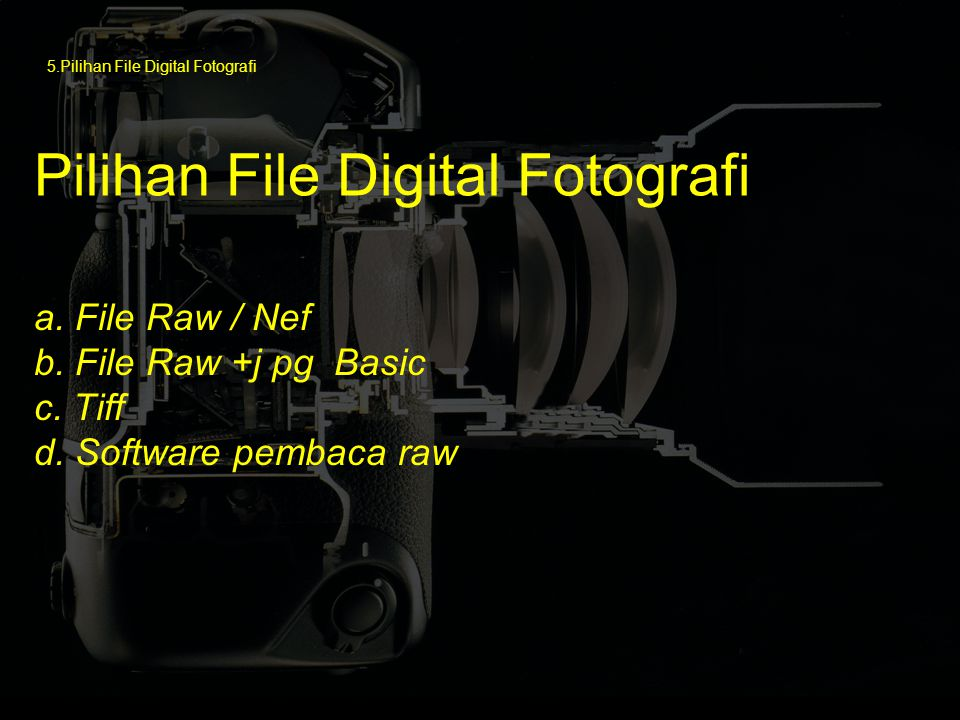 Pilihan File Digital Fotografi