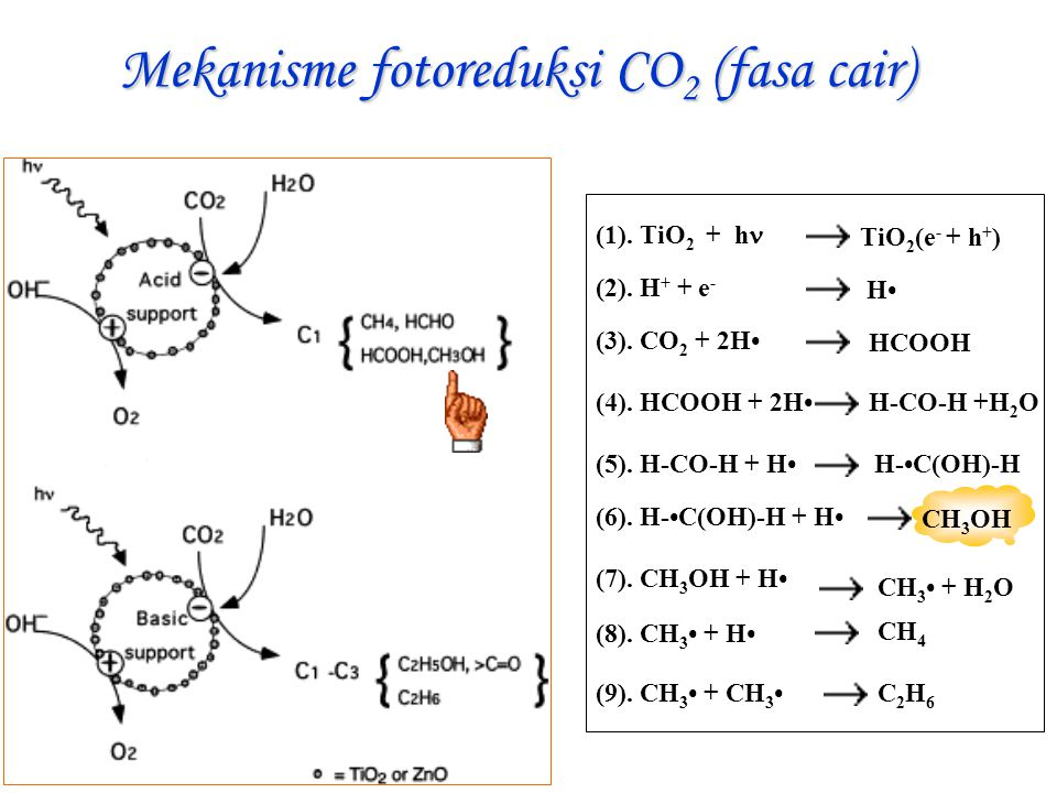 Mekanisme fotoreduksi CO2 (fasa cair)