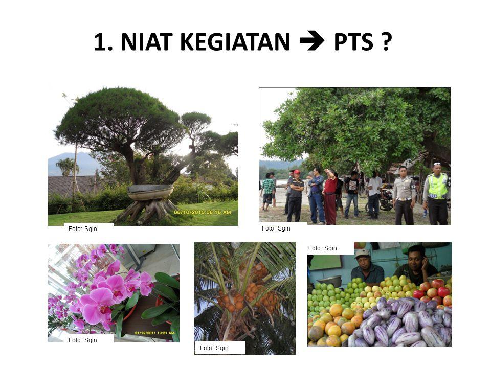 1. NIAT KEGIATAN  PTS Foto: Sgin Foto: Sgin Foto: Sgin Foto: Sgin