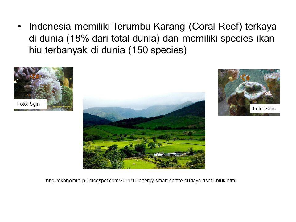Indonesia memiliki Terumbu Karang (Coral Reef) terkaya di dunia (18% dari total dunia) dan memiliki species ikan hiu terbanyak di dunia (150 species)