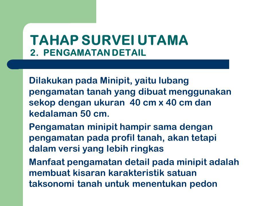 Tahap survei utama 2. Pengamatan Detail