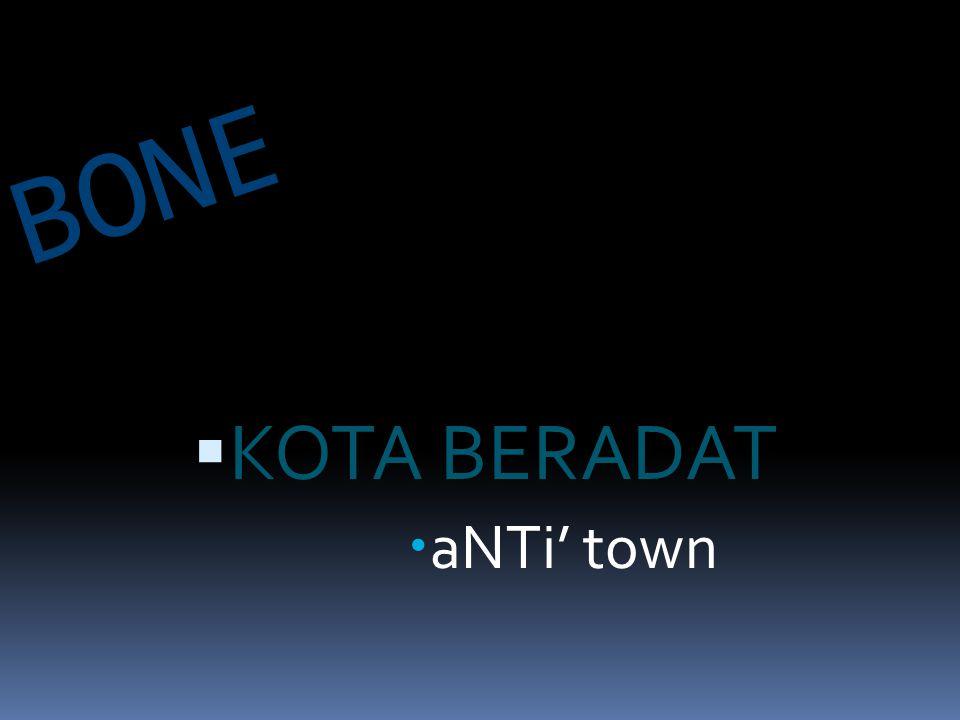 KOTA BERADAT aNTi' town