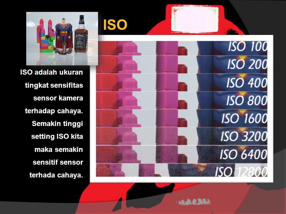 ISO ISO adalah ukuran tingkat sensifitas sensor kamera terhadap cahaya.