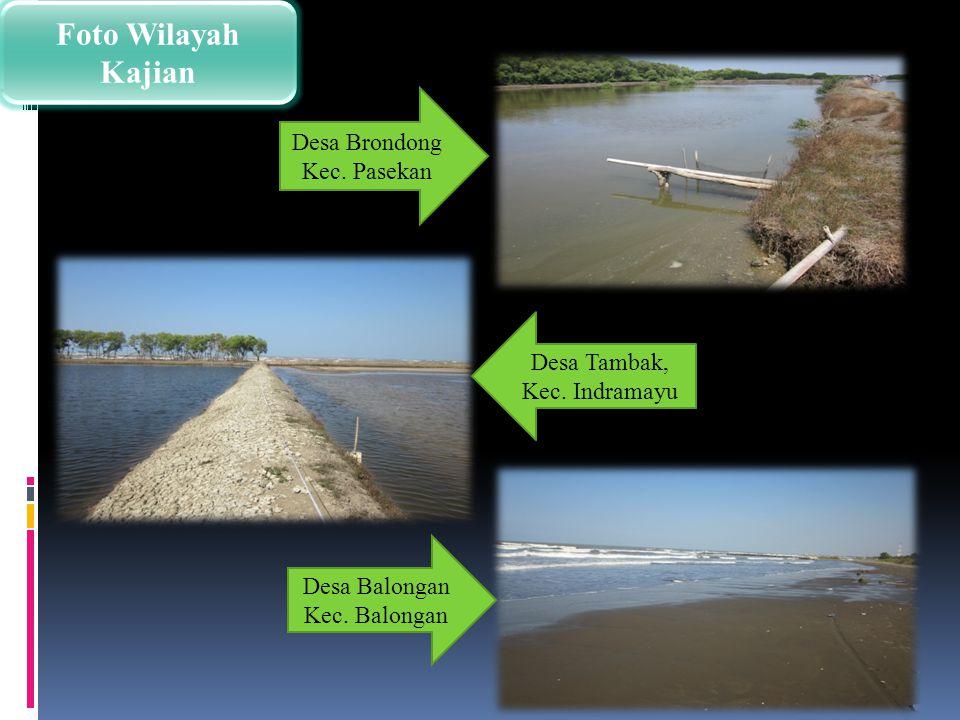 Foto Wilayah Kajian Desa Brondong Kec. Pasekan
