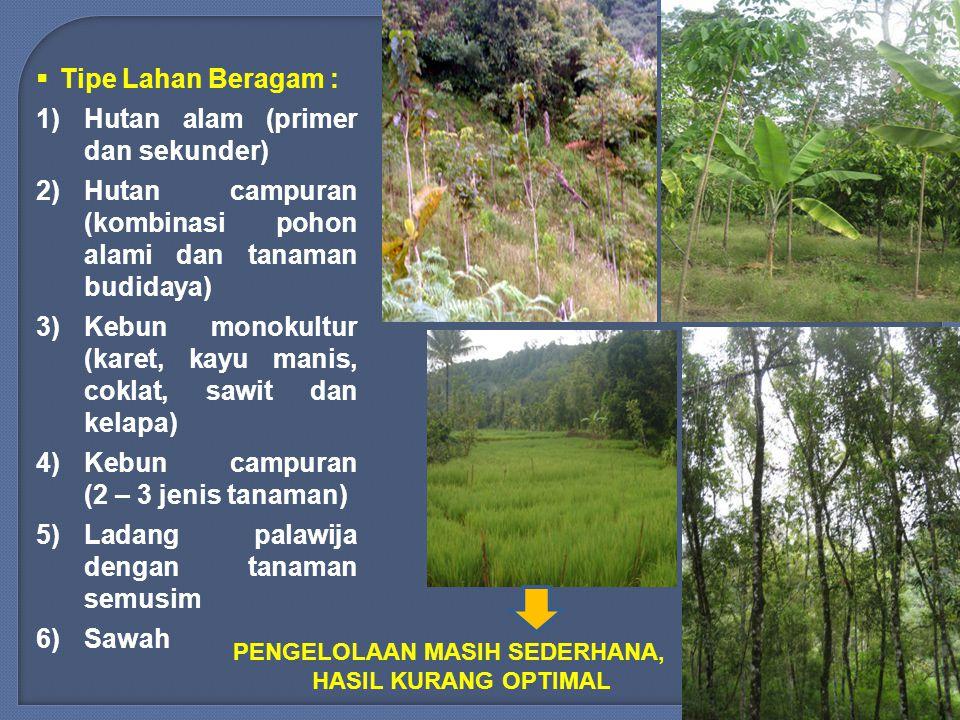 Hutan alam (primer dan sekunder)