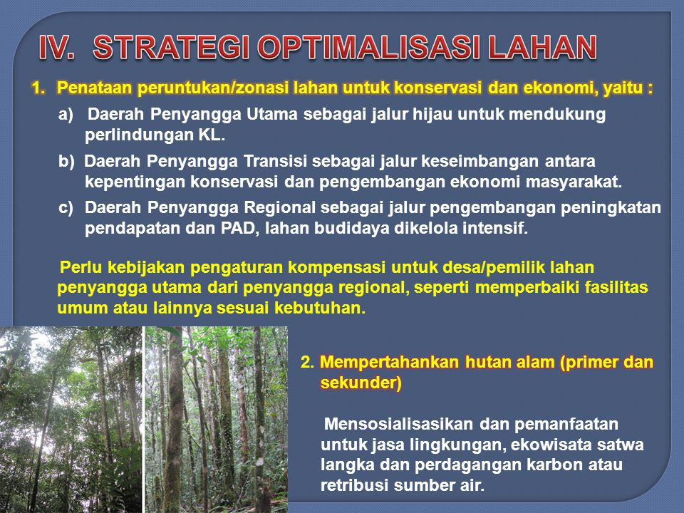 IV. STRATEGI OPTIMALISASI LAHAN