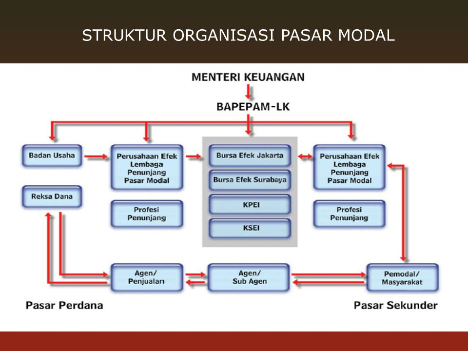 STRUKTUR ORGANISASI PASAR MODAL