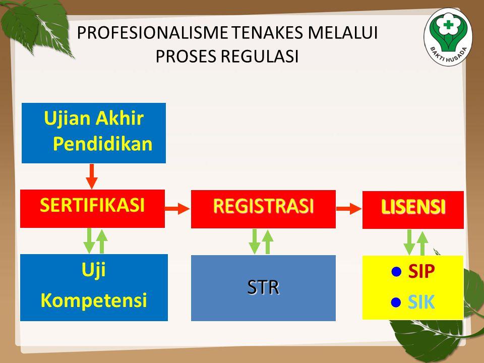 PROFESIONALISME TENAKES MELALUI PROSES REGULASI