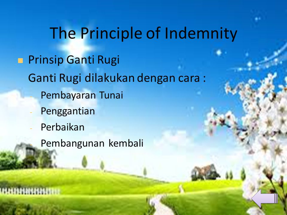 The Principle of Indemnity