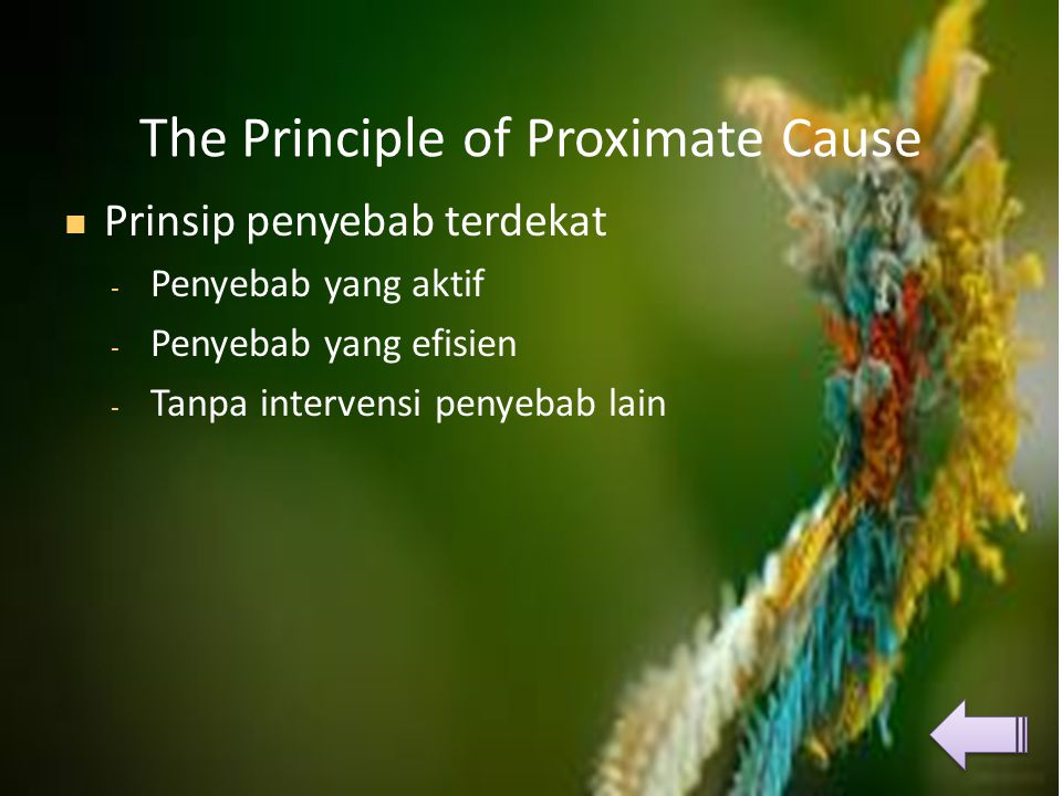 The Principle of Proximate Cause