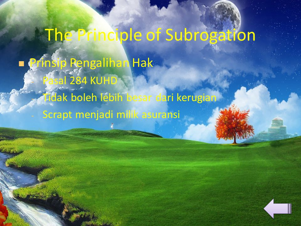The Principle of Subrogation