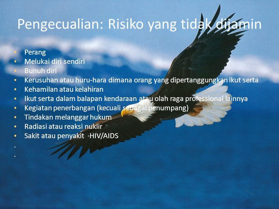 Pengecualian: Risiko yang tidak dijamin