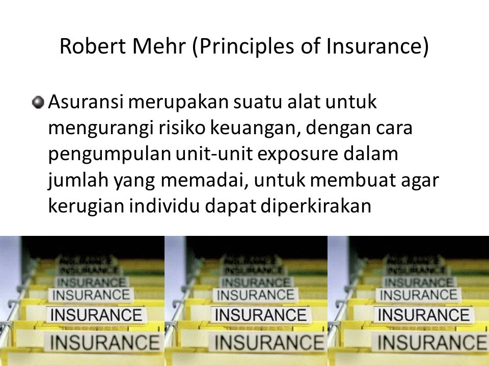 Robert Mehr (Principles of Insurance)