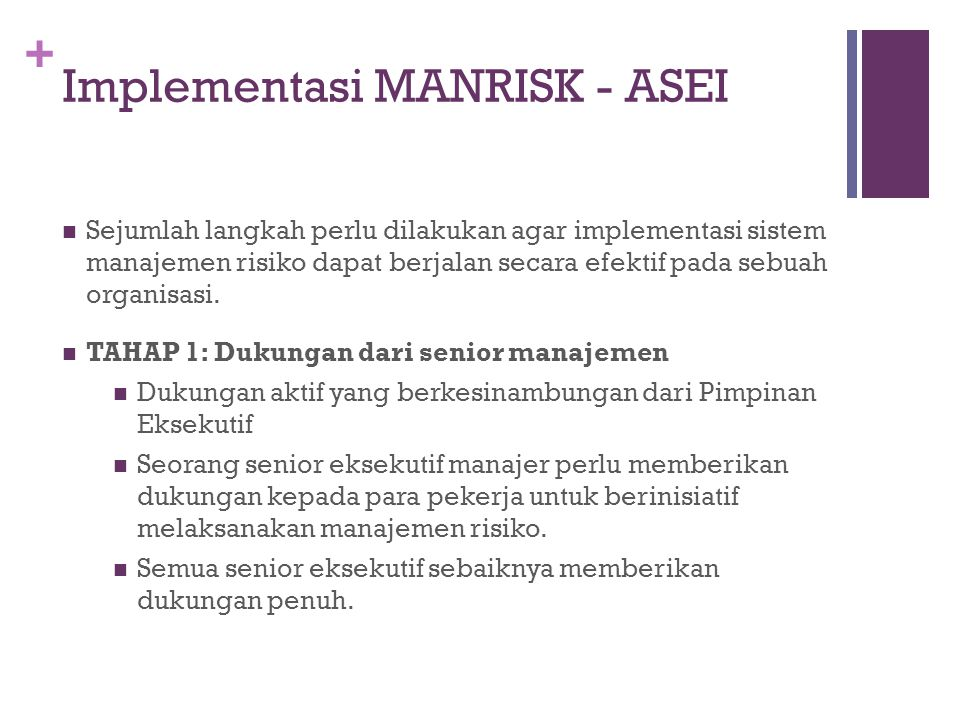 Implementasi MANRISK - ASEI