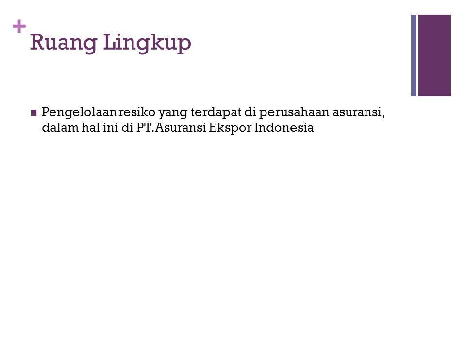 Ruang Lingkup Pengelolaan resiko yang terdapat di perusahaan asuransi, dalam hal ini di PT.Asuransi Ekspor Indonesia.