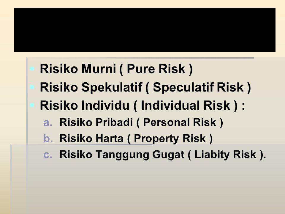 Janis Risiko : Risiko Murni ( Pure Risk )
