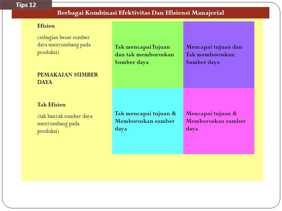 Berbagai Kombinasi Efektivitas Dan Efisiensi Manajerial