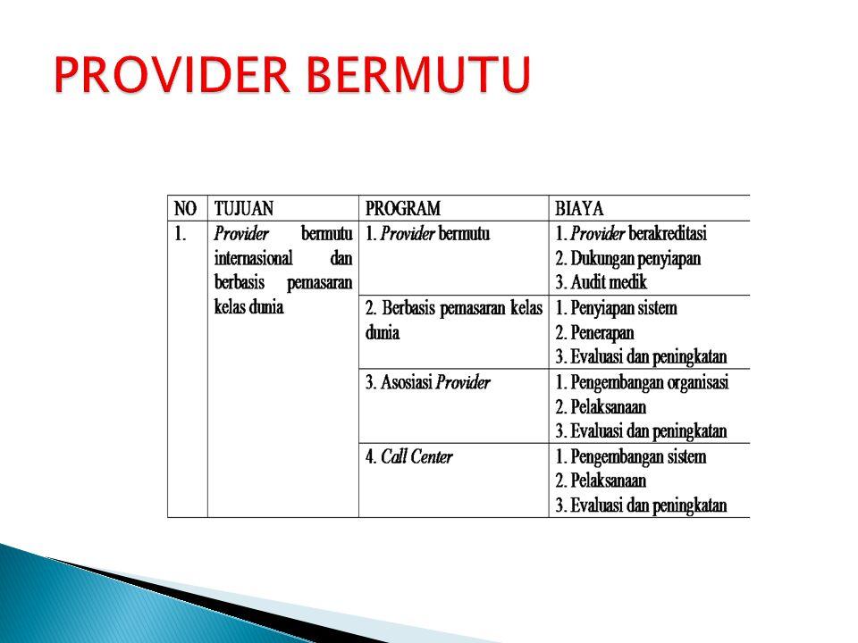 PROVIDER BERMUTU