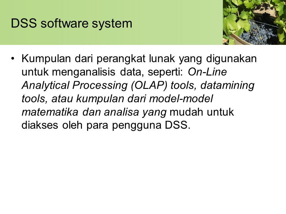 DSS software system