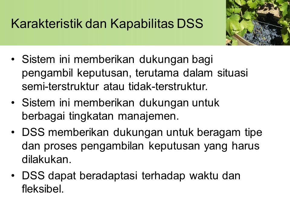 Karakteristik dan Kapabilitas DSS
