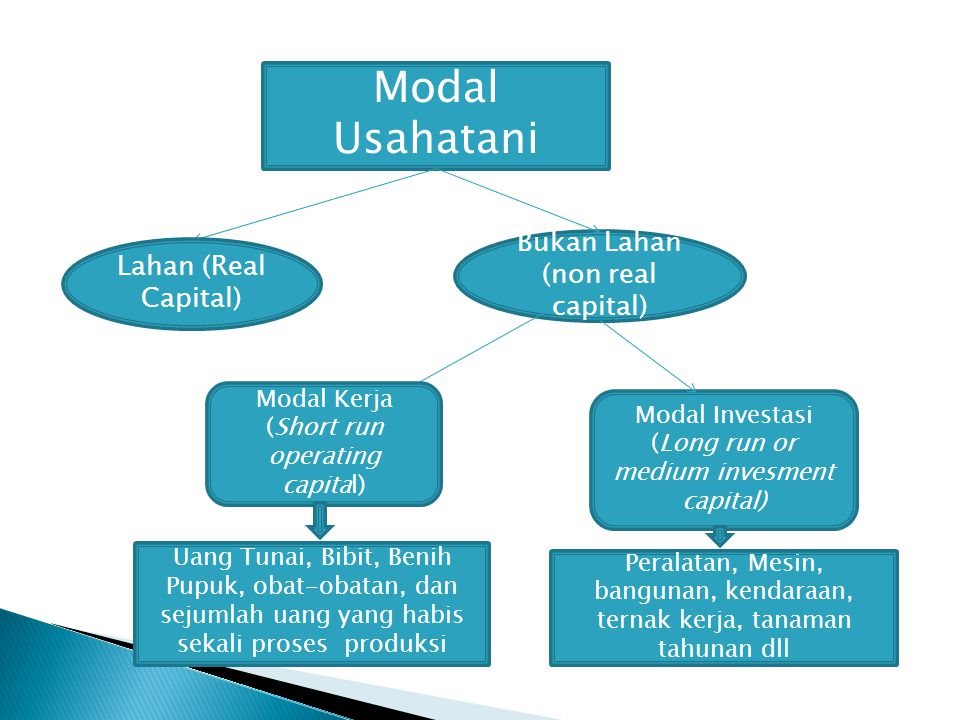 Modal Usahatani Bukan Lahan (non real capital) Lahan (Real Capital)